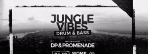 Jungle Vibes / drum' bass / Natale @Womb
